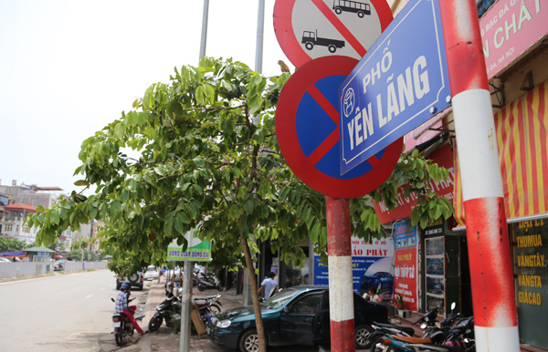 Thông Tắc Bồn Cầu Gía 120K tại Phố Yên Lãng, 0976544885, Dịch Vụ Xe Hút Bể Phốt ,Hố Ga Gía Rẻ