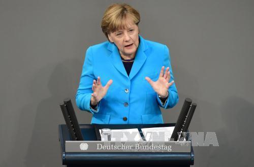 Đảng AFD kiện Thủ tướng Angela Merkel về chính sách nhập cư