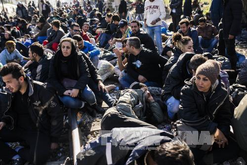 Đức muốn đặt hạn ngạch người tị nạn toàn châu Âu