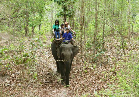 Tháng 3 - Cùng trải nghiệm du lịch Đắk Lắk - ảnh 1