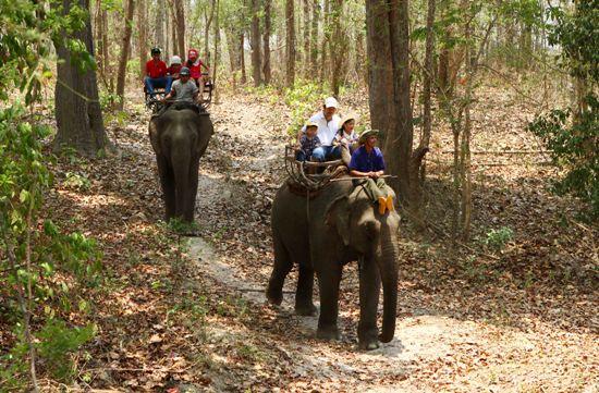 Tháng 3 - Cùng trải nghiệm du lịch Đắk Lắk - ảnh 2
