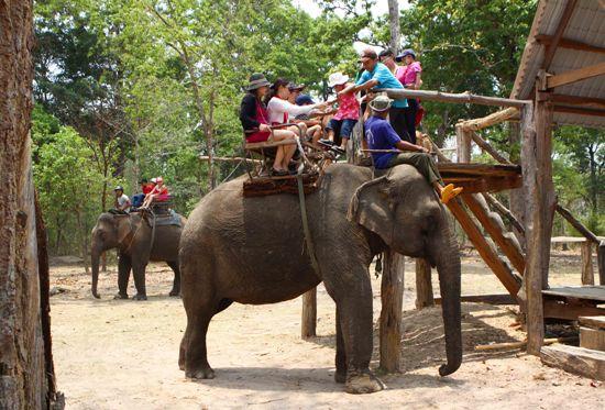 Tháng 3 - Cùng trải nghiệm du lịch Đắk Lắk - ảnh 3