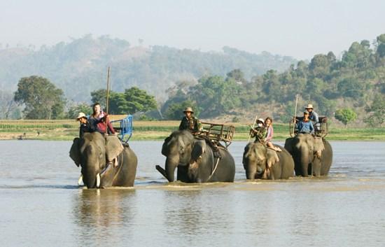 Tháng 3 - Cùng trải nghiệm du lịch Đắk Lắk - ảnh 5