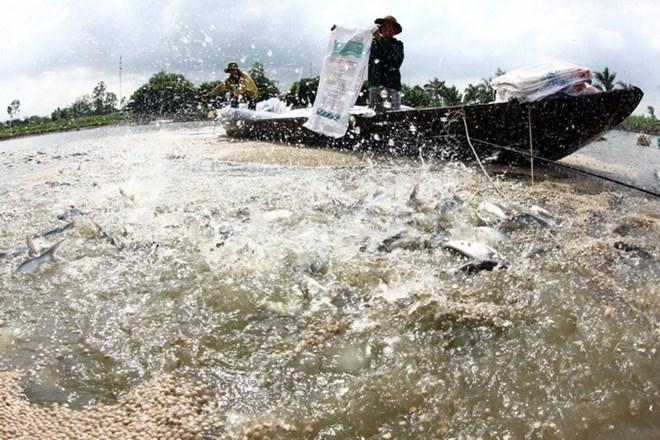 Kết quả hình ảnh cho thủy sản nuôi trồng