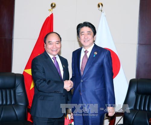 Thủ tướng Nguyễn Xuân Phúc hội kiến lãnh đạo Nhật Bản, New Zealand - Ảnh 1