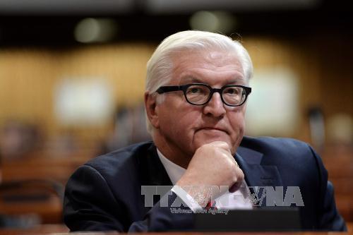Liệu Ngoại trưởng Steinmeier có trở thành Tổng thống Đức?
