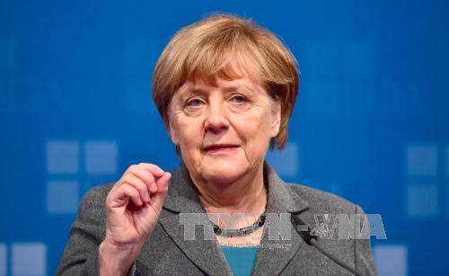 Thủ tướng Đức Angela Merkel trong một cuộc họp ở Berlin ngày 15/11. Ảnh: AFP/TTXVN