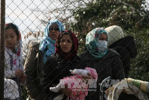 Người di cư tại sân bay cũ Elliniko, Hy Lạp ngày 6/2. Ảnh: THX/TTXVN