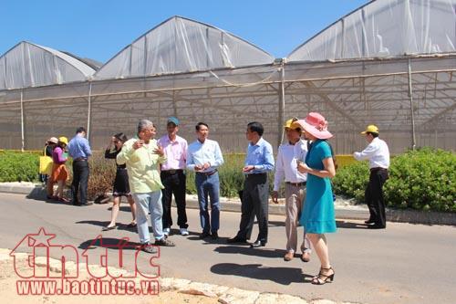 Làm nông nghiệp công nghệ cao ở Israel, những điều mắt thấy tai nghe