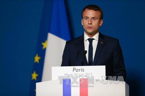 Tổng thống Macron sẽ rút Pháp khỏi các 'tiền tuyến' Ukraine, Syria - Ảnh 1