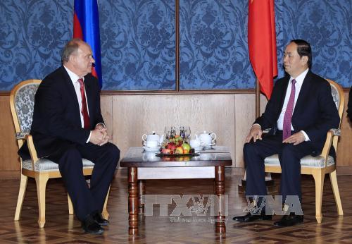 Chủ tịch nước Trần Đại Quang tiếp Chủ tịch Đảng Cộng sản Liên bang Nga - Ảnh 1