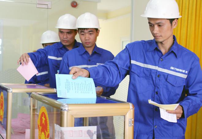 Ngày 22/5, 12 vạn công nhân ngành than thuộc Tập đoàn công nghiệp Than và Khoáng sản Việt Nam cùng với cử tri cả nước đã có tập trung đông đủ các tại điểm bỏ phiếu để thực hiện quyền bầu cử của mình.