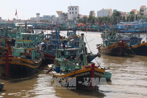 Tàu neo đậu tránh trú bão trên sông Cà Ty, Phan Thiết. Ảnh: Nguyễn Thanh/TTXVN