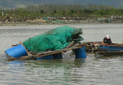 Lồng bè nuôi trồng thủy sản bị trôi dạt trên biển.