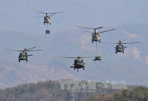 """Máy bay trực thăng UH-60 và CH-47 Chinook của quân đội Mỹ tham gia tập trận """"Đại bàng non"""" ở Pocheon, phía bắc thủ đô Seoul ngày 25/3/2015. Ảnh: AFP/TTXVN"""