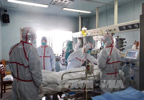 Xuất hiện ca nhiễm cúm H7N4 đầu tiên trên thế giới