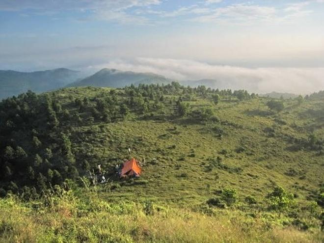 Núi Hàm Lợn có những đồi thông và đồi keo xanh mướt.