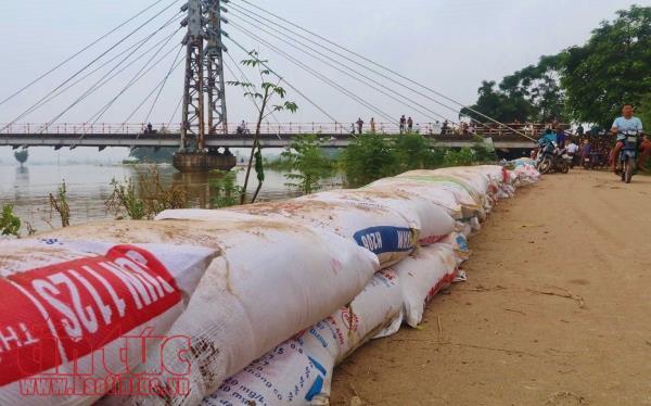 Video bao cát chất cao để ngăn nước, bảo vệ đê sông Bùi